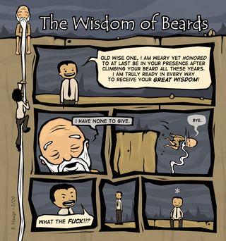 Brian Hauge - beard_wisdom
